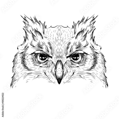 Wall Murals Hand drawn Sketch of animals Image Portrait owl. African / indian / totem / tattoo design. Use for print, posters, t-shirts. Hand draw vector illustration