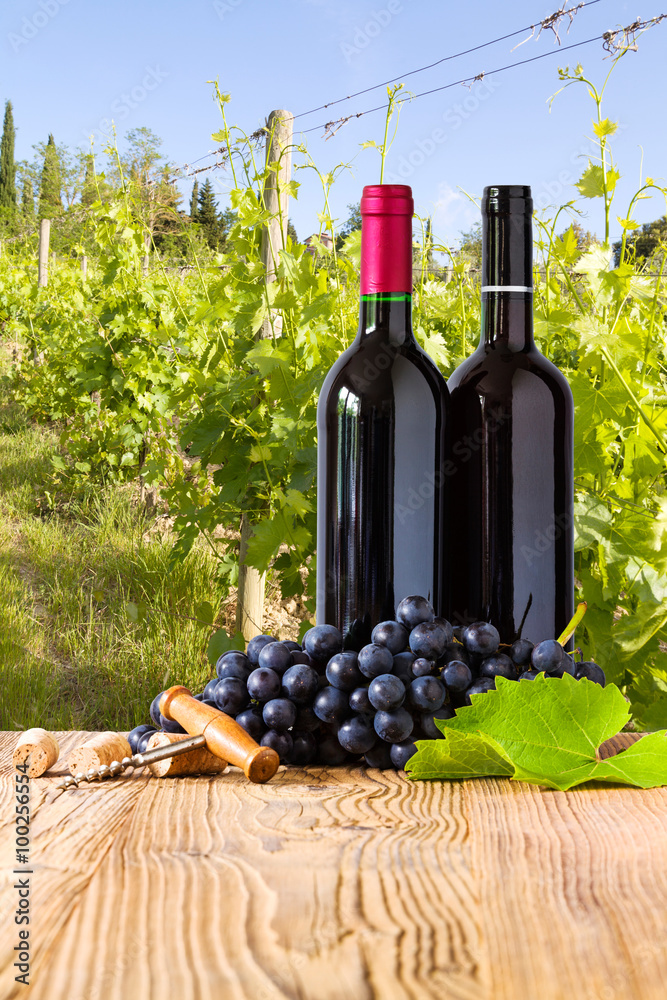 Red wine bottles with grapes on wodden board. Beautiful Tuscany