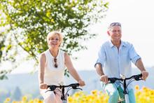Senioren, Paar Aus Frau Und Mann, Fährt Fahrrad An Einem Sonnenblumen Feld