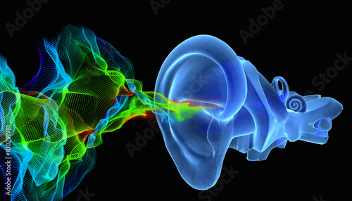 Photo 3D ear anatomy with siund waves