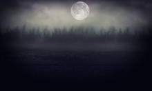 Night Forest With Moon   Abstr...