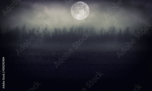Fotografía  Night Forest With Moon   Abstract Background.