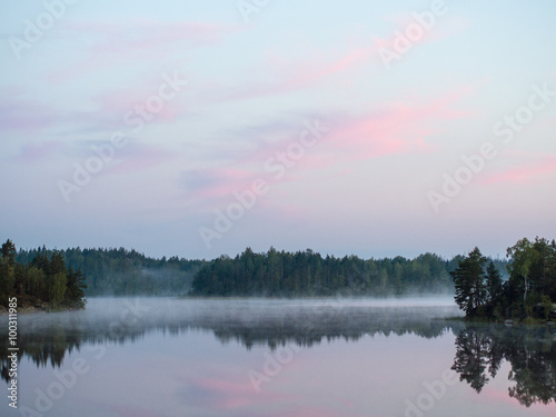Tuinposter Purper forest lake with morning fog