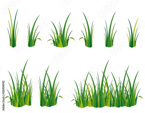 Obraz Gras Spielwiese Wiese - fototapety do salonu