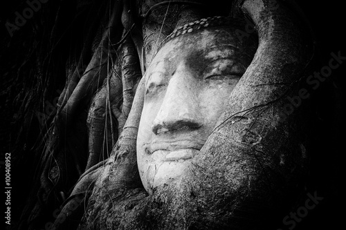 Photo  Peaceful and tranquil face of Buddha carved on ancient stone