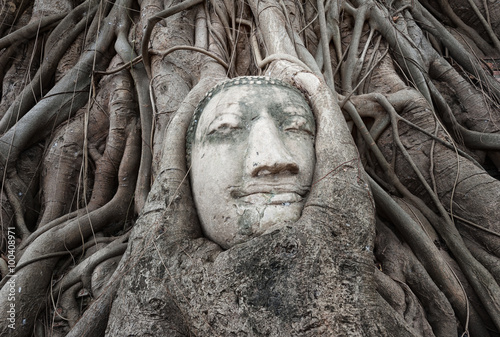 Photo  Amazing ancient temple with Buddha head in Thailand