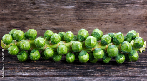 Aluminium Prints Brussels Sprouts on the stalk