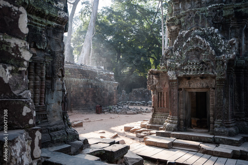 фотография  Rays of early morning light at Ta prohm ruined temple, Angkor wat, cambodia