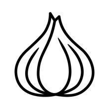 Garlic Bulb / Allium Sativum L...