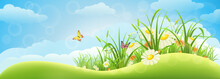 Spring Meadow Background  With Grass, Flowers And Sky