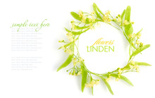 Circle With Linden Flowers On A White Background