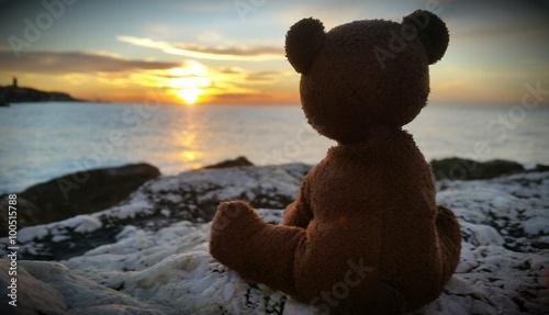 Fotografía  Teddy Bear with sunrise