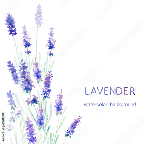 Watecolor lavender card Poster