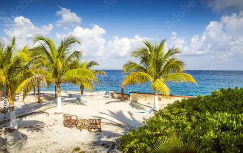 Fotobehang Tropical strand Sandy beach of a tropical island with palm trees