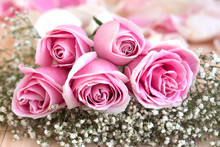 Pink Roses And Petal For Love