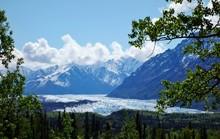 Glaciers In The Kenai Fjords N...