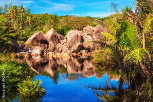 Fotografia Rocks and palms reflected in tropical lake in jungle, La Digue island in Seychel