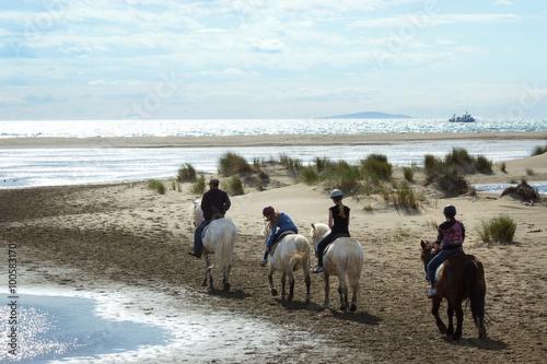 Photo  quatre cavaliers et chevaux le long de la plage de l'Espiguette, Languedoc Franc
