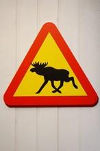 Moose Crossing Road Sign