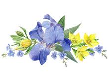 Iris Flowers Composition