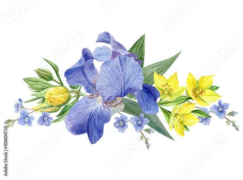Spoed Foto op Canvas Iris Iris Flowers composition