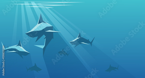 Photo Sharks