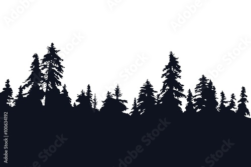 Fotografija  Forest silhouette