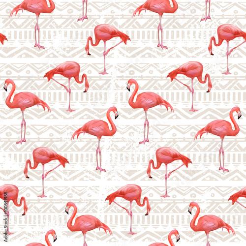 flamingo-ptak-tlo-jednolite-wektor-wzor