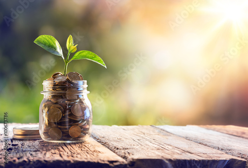 Pinturas sobre lienzo  Plant Growing In Savings Coins - Investment And Interest Concept