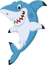 Cartoon Funny Shark Posing