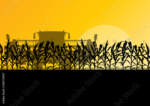 Fotografia  Corn field harvesting with combine harvester yellow abstract rur