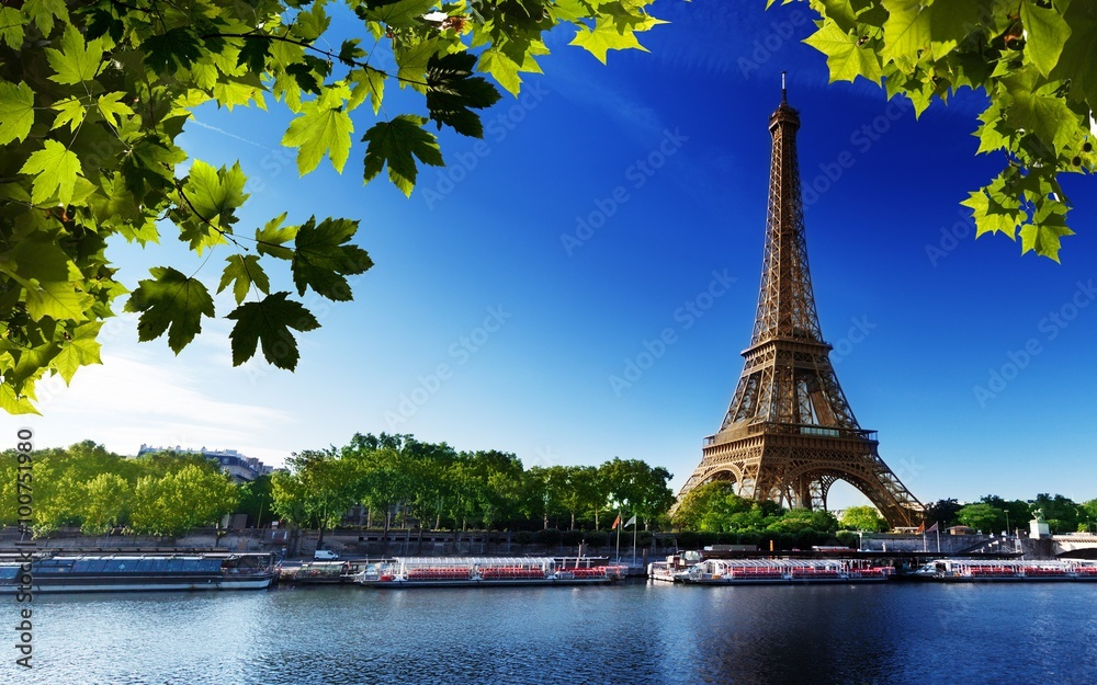 Fototapeta paris eiffel france river beach trees