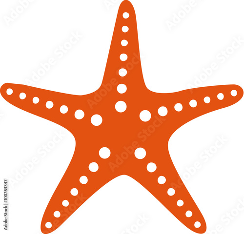 Photo Starfish icon