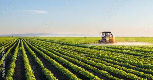 Foto  Tractor spraying soybean field