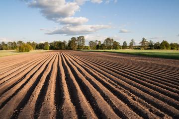 Widok na zaorane pole w piękny słoneczny dzień na wsi