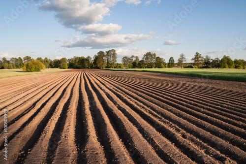 Spoed Foto op Canvas Platteland Widok na zaorane pole w piękny słoneczny dzień na wsi