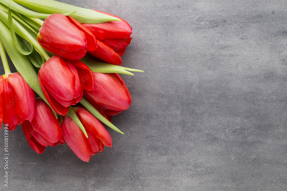 Fototapety, obrazy: Red tulips on a wooden background.
