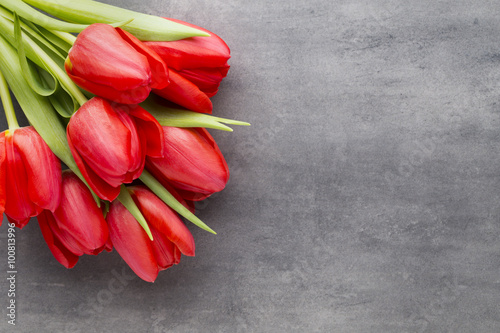 Fototapeta Red tulips on a wooden background. obraz