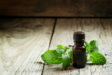 Essential Oil Of Peppermint In...