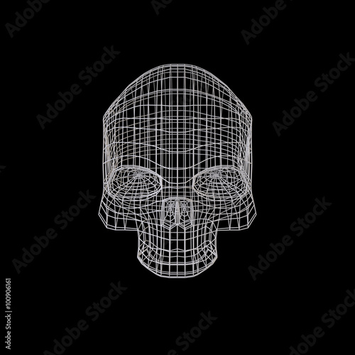 Skull  The Three-dimensional Skull on a Black background  Head