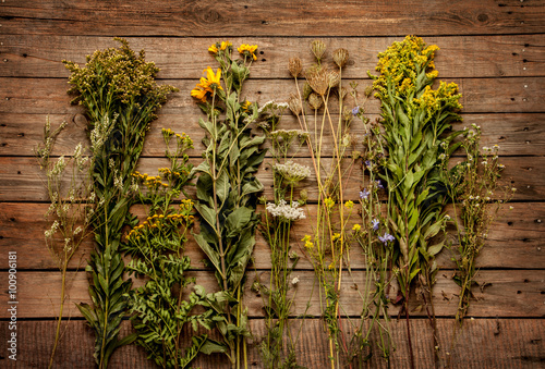 Late Summer Natural Meadow Flowers And Plants On Vintage Wooden Background From Above Collection Of