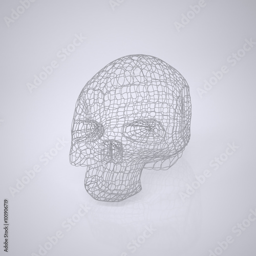 Skull  The Three-dimensional Skull on a White background  Head