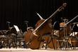 Leinwanddruck Bild - Instruments Symphony Orchestra onstage