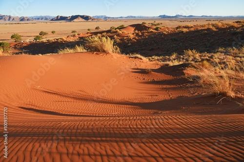 Fotografering  Sandwüste im Namib-Naukluft-Park