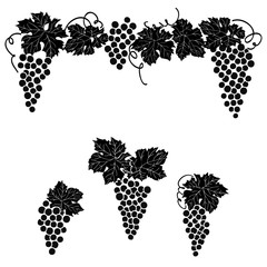 Fototapeta Wino Grapes engraved design set Vine grape ornament element decor set.