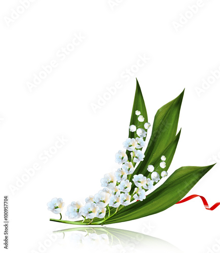 Wall Murals Lily of the valley The branch of lilies of the valley flowers