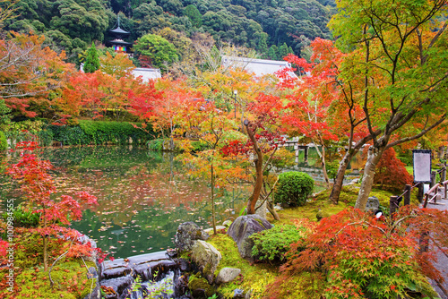 Foto op Canvas Zen Autumn foliage garden and pagoda at Eikando, Kyoto