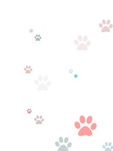Coloured Random Paw Print Design