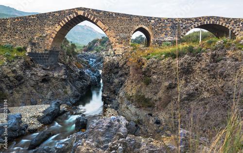Obraz na plátne  Ponte dei Saraceni