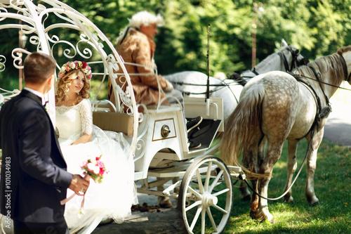 Fotografie, Obraz  Fairy-tale cinderella wedding carriage and horse magical wedding